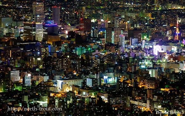 札幌の夜景(藻岩山)