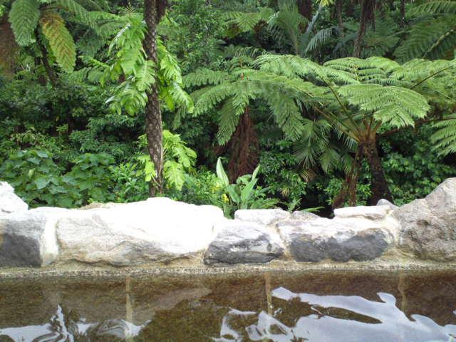 西表温泉の露天風呂より