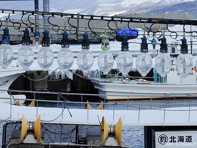 寿都漁港にて。
