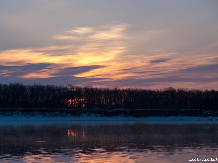 対岸の河畔林より、太陽が昇ってきた。