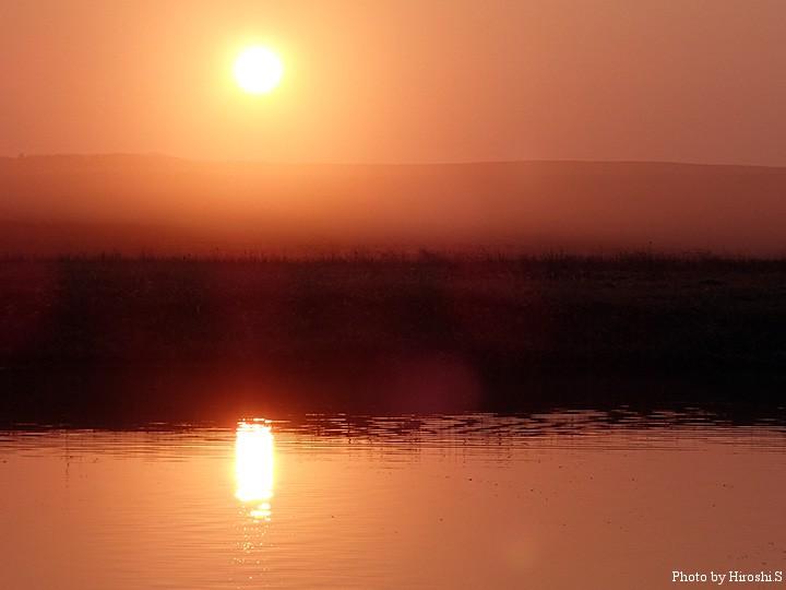 日の出は、一気に魚の活性が上がる瞬間である。