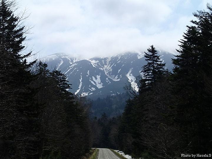 オンネトーへ続く道。ここも深い森に包まれている。