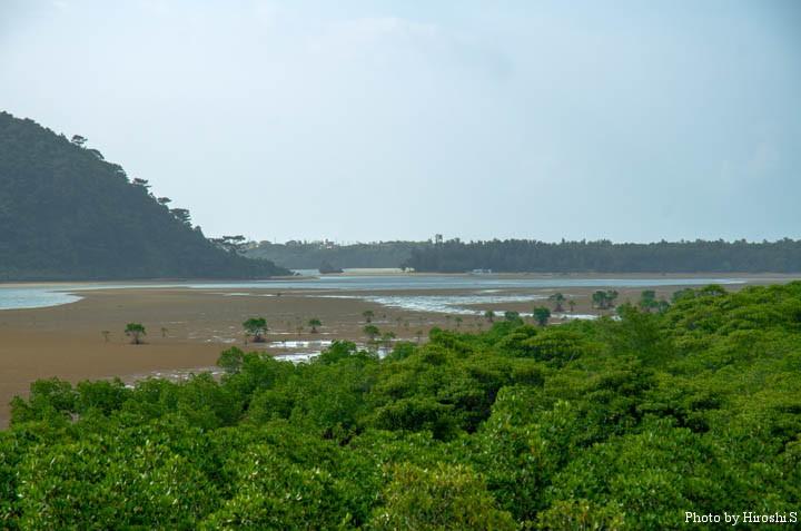 満潮になれば、砂場は全て水中に没する。