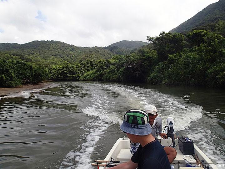 マングローブの川を移動する。