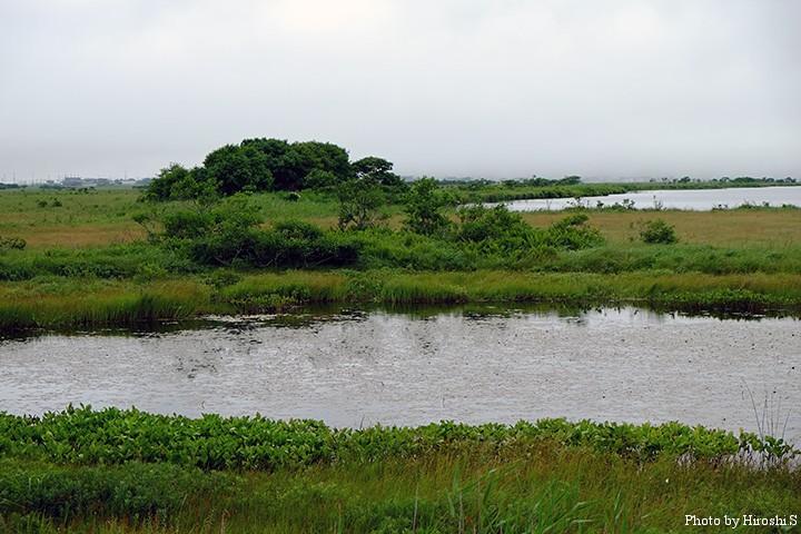 霧多布湿原にて 湿原の海岸よりには、集落があるのが印象的。