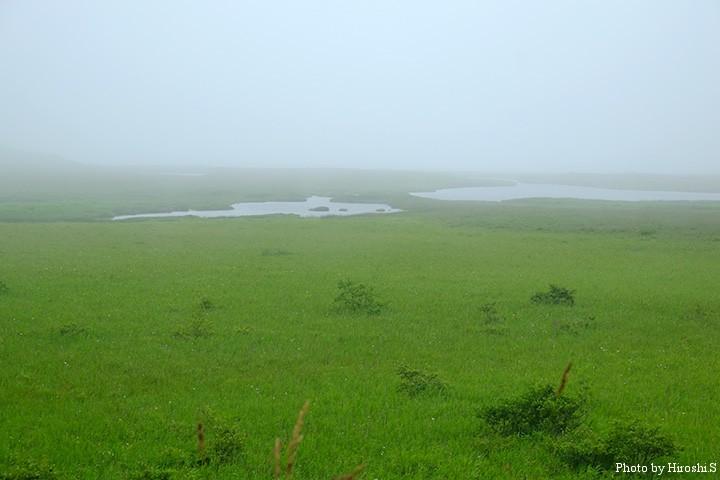 厚床周辺にて 道東には、多くの湖沼が点在しているのだ。