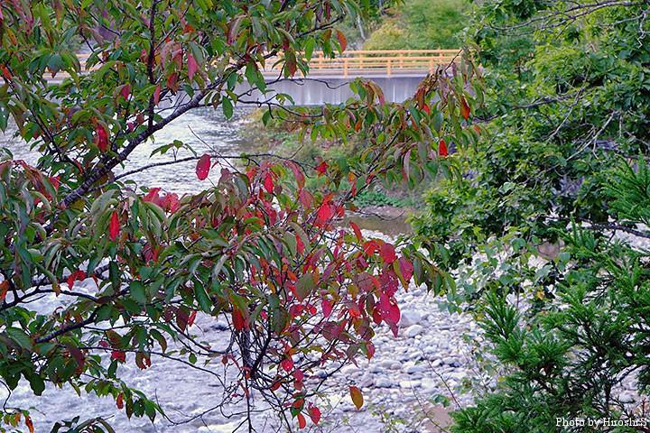 熊嶺荘の部屋の窓から。正面に野田追川が望める。