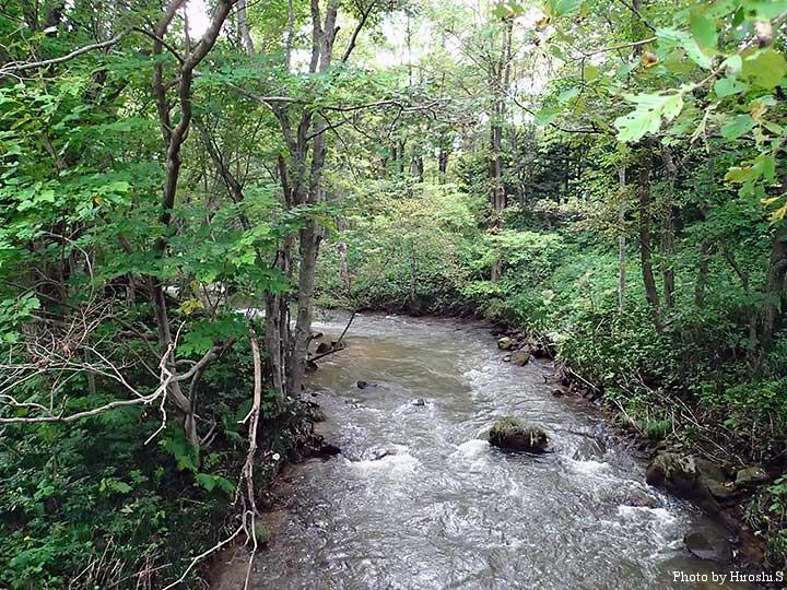 瀬とトロ場が続く川である。