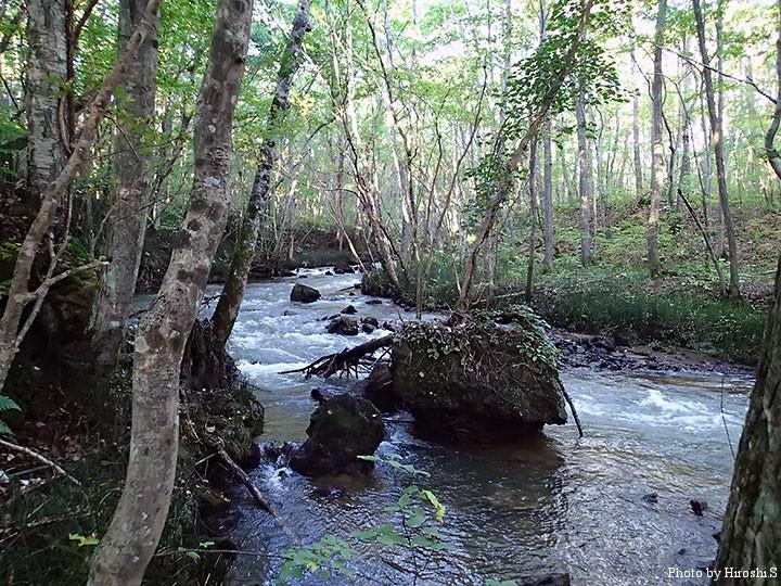 川原のない流れは、道南にしては珍しい。