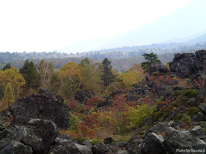 浅間山(鬼押出し園) そろそろ紅葉の季節を迎える