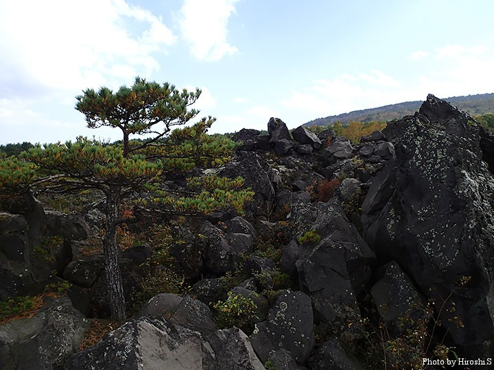 浅間山(鬼押出し園)