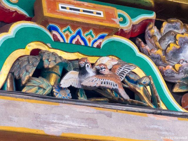 日光東照宮 眠り猫裏の雀