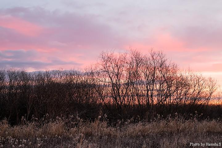 朝焼けは雲がある方が、絶妙のグラデーションを作り出す。