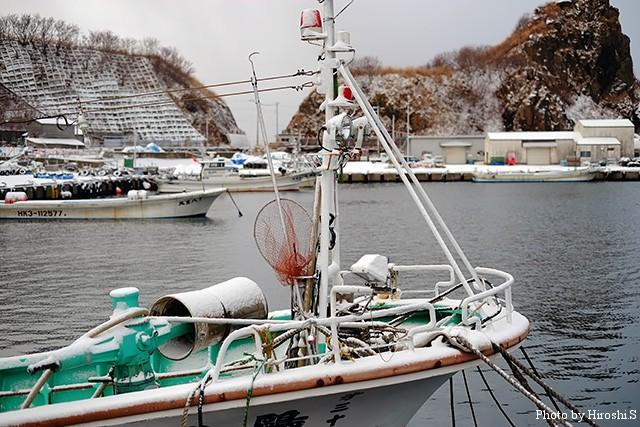 冬の漁港は静かであり、遠くで波音が聞こえるのみ。