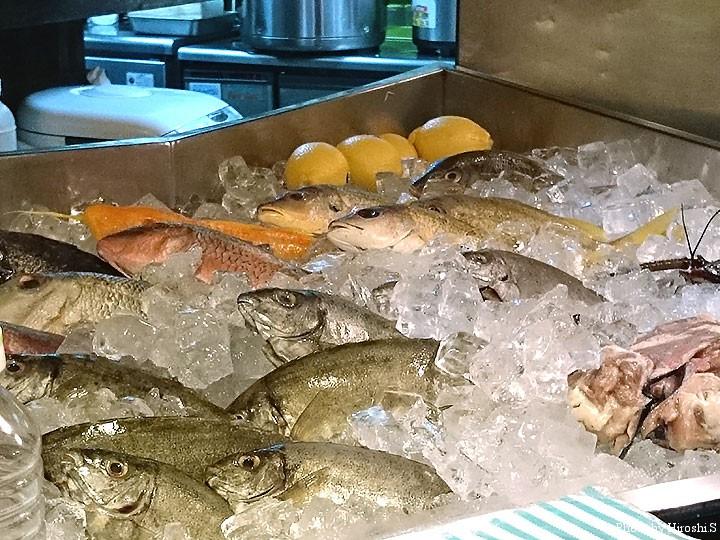 なかむら家にて カウンター席前には、鮮魚が並ぶ