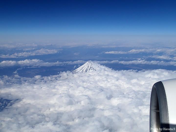 雲海に富士が浮かんでいた