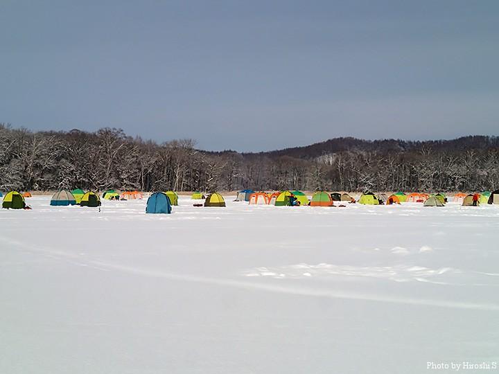 駐車場正面のテント村