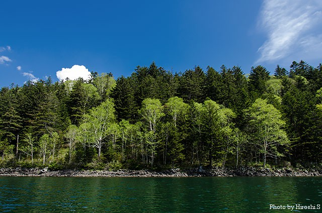 空と森、そして湖水と。