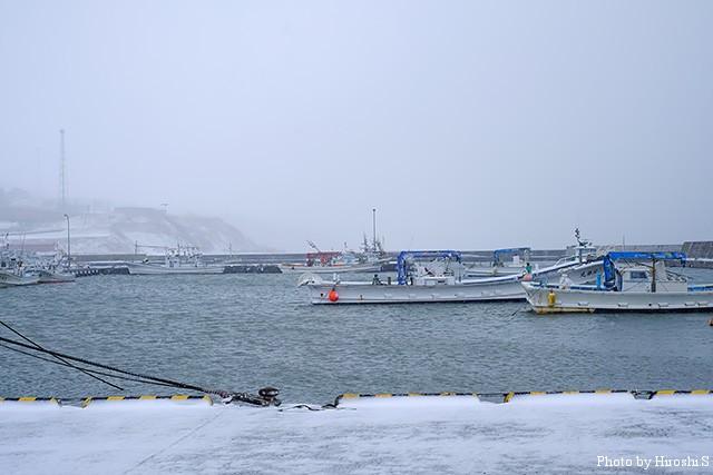 厚田港は風が強く、人1人いない。