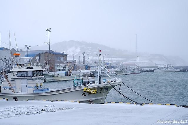 決して冬ではないのだが、雰囲気はまだ冬だね。それでも、積まれた雪は皆無であった。