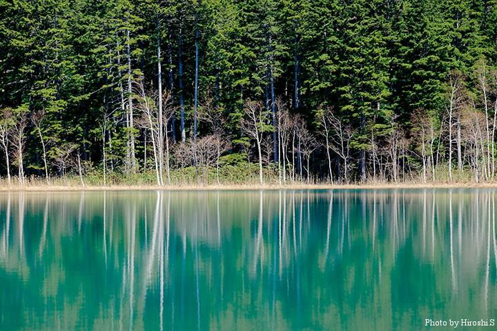 帰りに立ち寄ったオンネトー 湖面に映る木々が美しい
