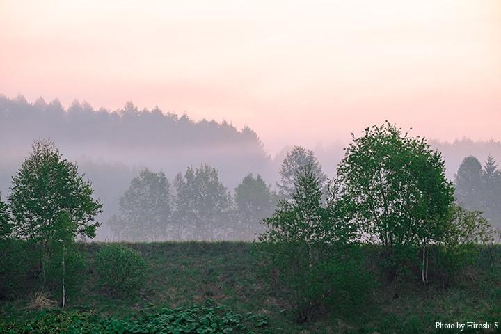 朝霧は変哲も無い景色を水墨画のようにかえてしまう XT-1