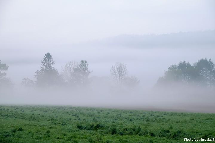 オホーツクの大地は朝霧に覆われていた X-T1