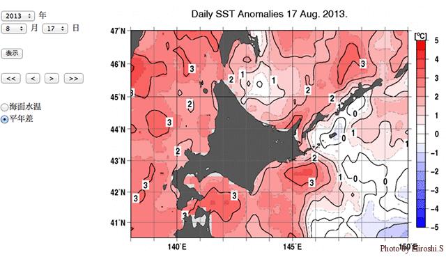 気象庁ウェブサイトより 2013年8月17日 平年海水温との差