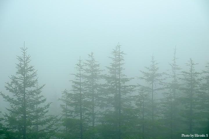 美幌峠付近 上の写真と1分ほどの違いである