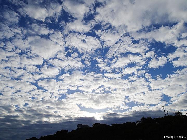 マリーナ上空には秋空が広がっていた