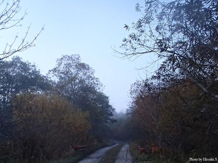 他の河川と比べ、橋は僅かな入渓点の1つである