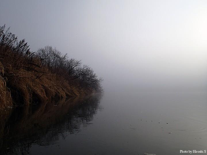 早朝から霧に覆われ、無風の為、暫くこんな光景の中で竿を振った。