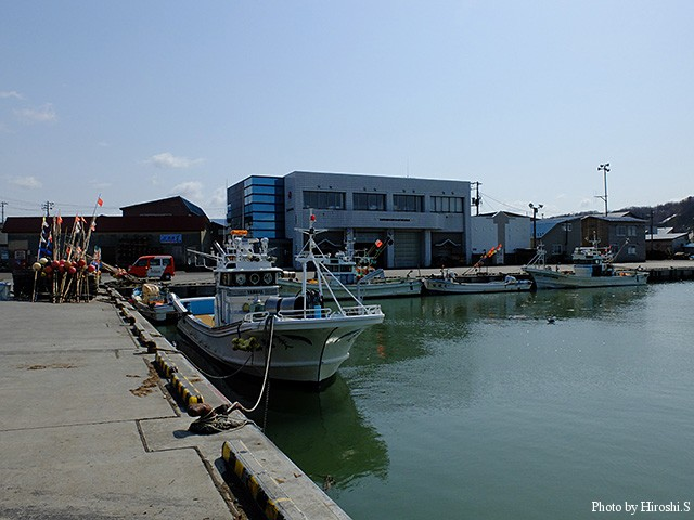 厚田漁港 正面の建物は漁協である。昔は今の朝市あたりに古い建物があったと記憶している。 シャコも捕れていた時代なので、漁協で茹でたばかりのそれを食べた記憶もある。