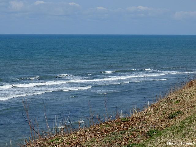 河口から離れると、日本海らしい綺麗な海が広がっている。
