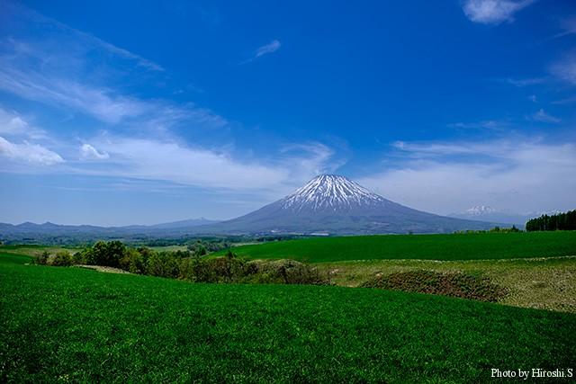 京極町から羊蹄山を