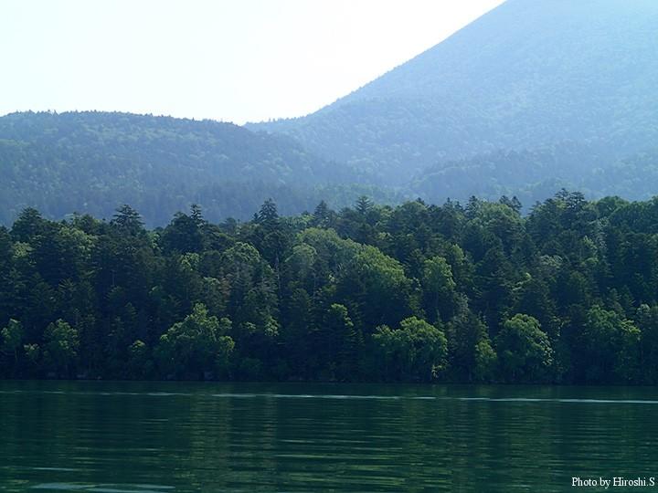 雄阿寒の麓にある森は深く美しい