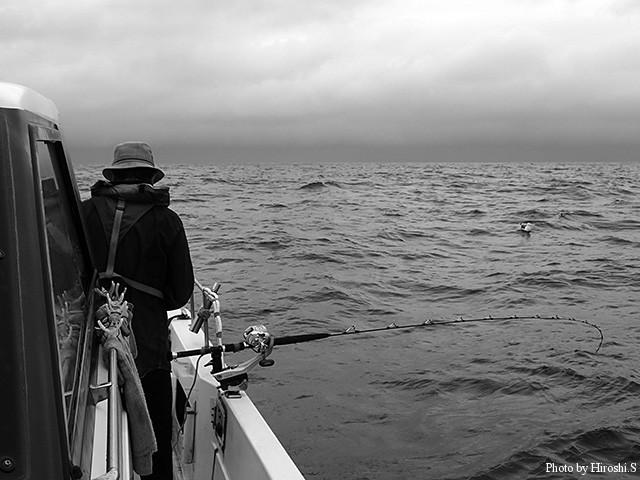 霧雨とウネリの中、外洋でスルメイカを狙う