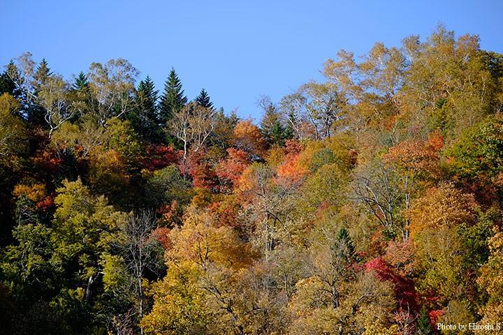 峠はすでに全山紅葉。冬までのわずかな間に魅せる自然の妙。