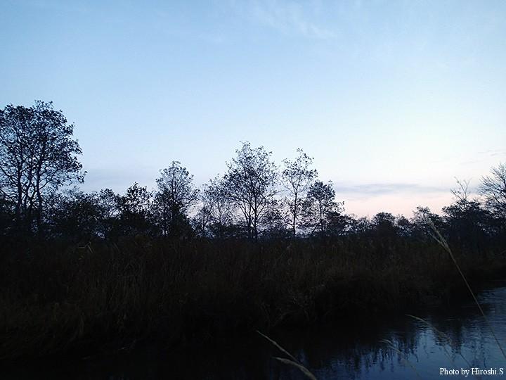 川は薄暗く、水量がある為、深く不気味さを感じるほどであった。