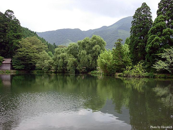 金鱗湖 思えば外来魚ばかり泳いでいた様な気がする