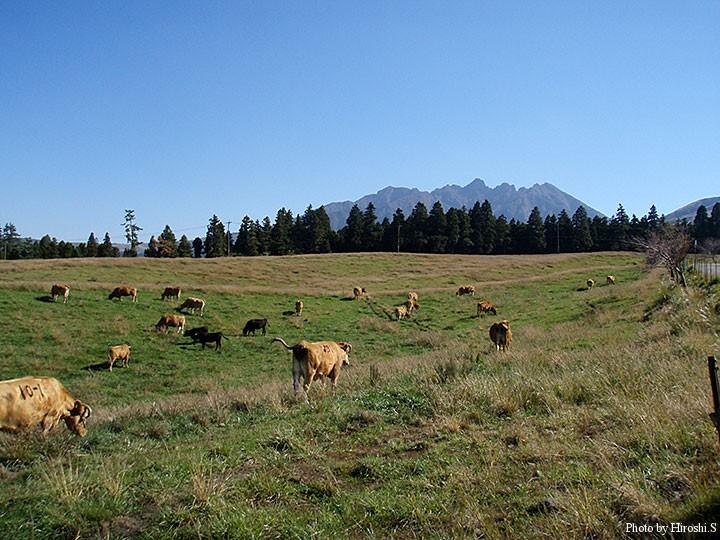 仙酔峡へ向かう途中の牧草地より 奥に見える山は根子岳
