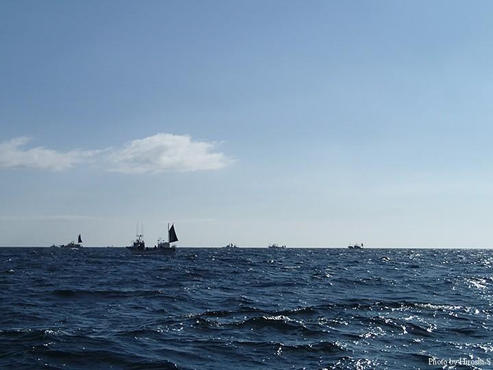 浮きソウハチ狙いの船団 白老沖であるが、室蘭から向かったプレジャー船はK船長号のみ。