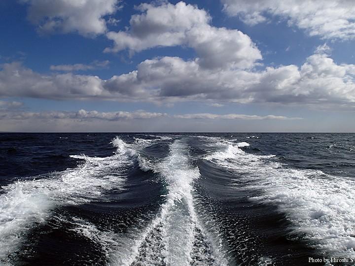 早い時間の登別沖は波が落ち、快適な船旅であった。