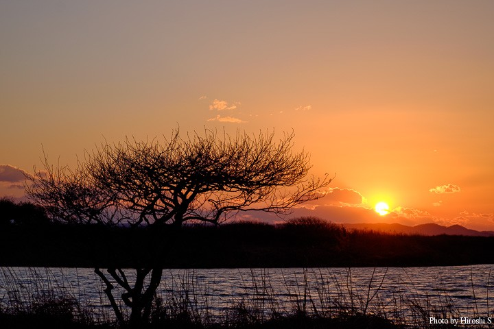 トイトッキ沼のサンセット あと二ヶ月もすれば、花が咲き乱れる場所だ