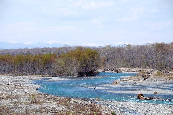 南十勝の名流、豊似川。既に河口間近だが、澄んだ水が流れている