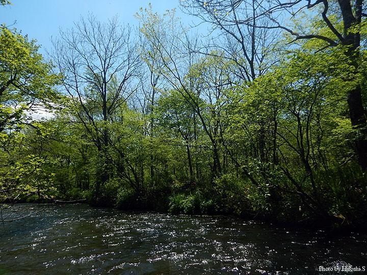 河原がなく、瀬が連続する流れ