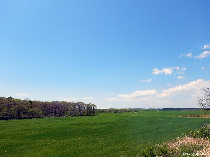 川を上がると、牧場が広がる。
