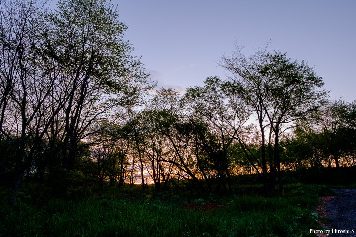 道東の夜明けは早く、また鳥の鳴き声が凄い。