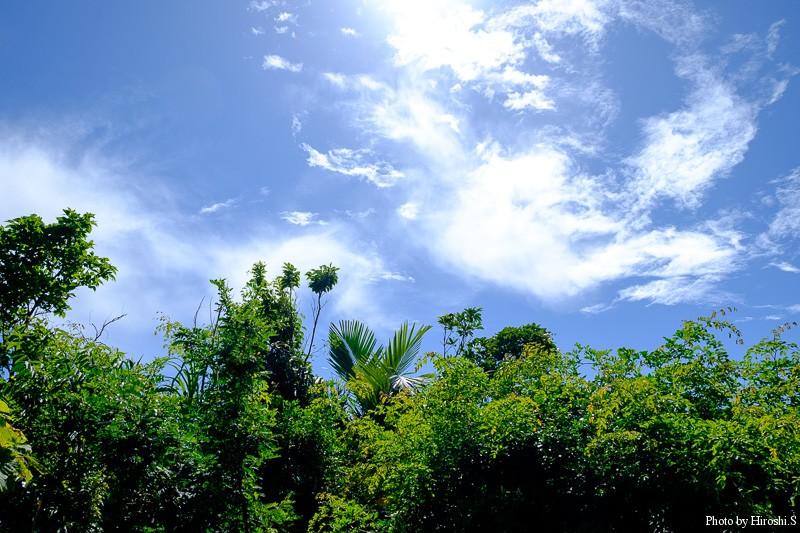 西表島 西海岸の空