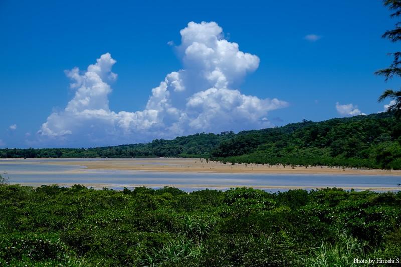 西表島 浦内川河口 干潮の為、砂地が出ている。